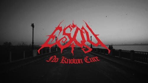 Esqu - No Known Cure (album teaser)